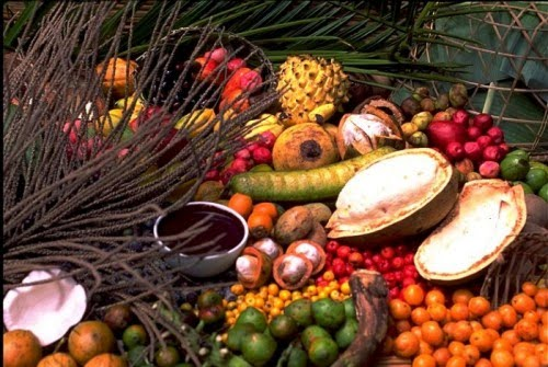 frutos%20da%20amazonia2